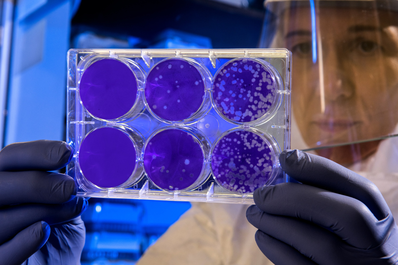 laboratorio farmaceutico